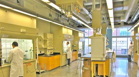 About Mockler Lab